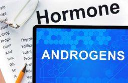 Hormone androgen là một loại nội tiết tố trong cơ thể, thường được gọi là nội tiết tố nam