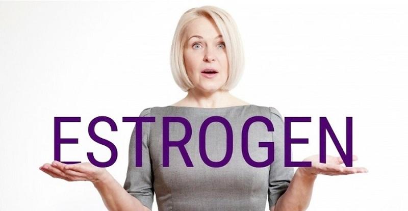 Hormone estrogen là một loại hormone sinh sản nữ giới được tiết ra chủ yếu ở buồng trứng