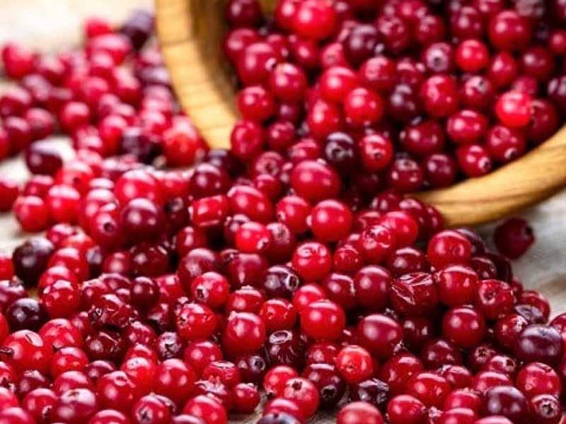Các loại quả mọng có chứa thành phần giúp làm giảm căng thẳng và tốt cho nội tiết tố nữ