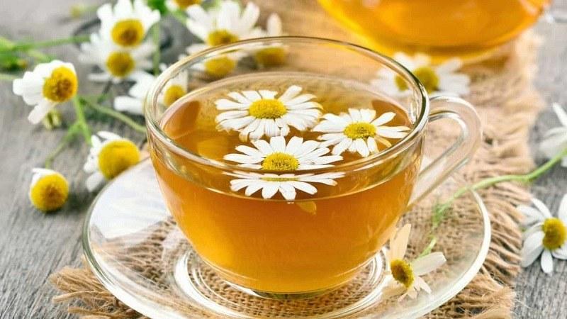 Uống trà hoa cúc cũng có tác dụng cải thiện tình trạng phụ nữ tiền mãn kinh mất ngủ